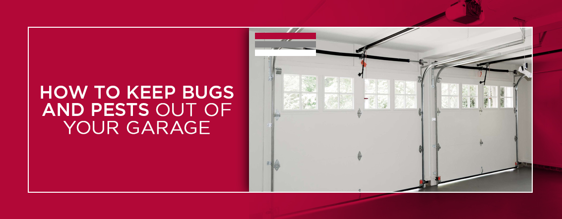 How-to-Keep-Bugs-and-Pests-out-of-Your-Garage