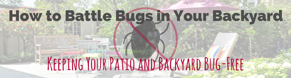 keep backyard patio bug free